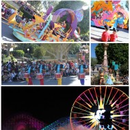Disneyland: Magical Parades & Shows