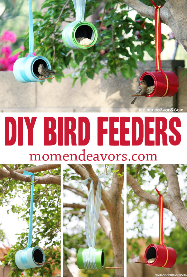 DIY Bird Feeders Collage