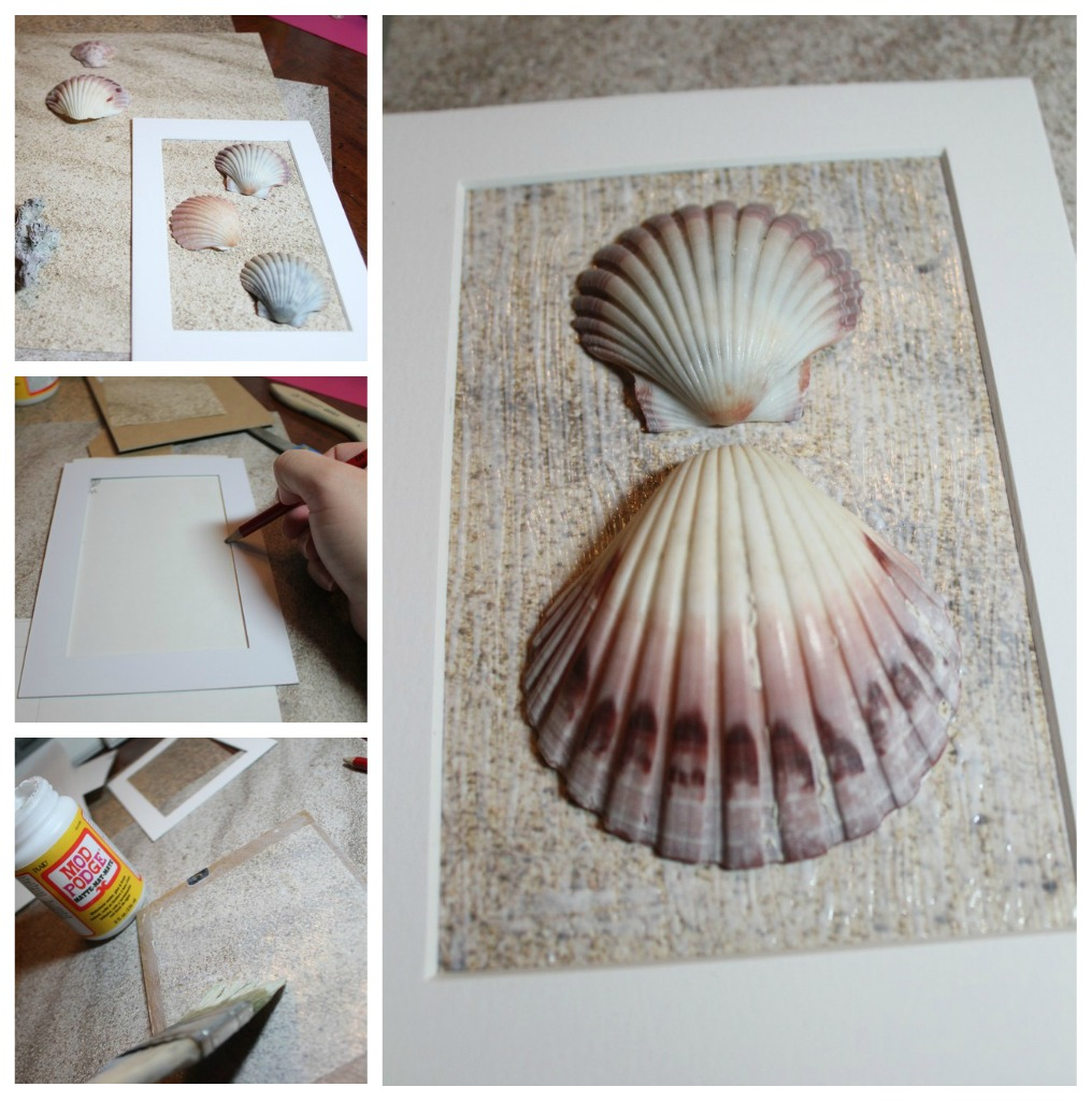 Diy framed shell art for Shell diy
