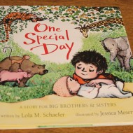 One Special Day: A Story for Big Brothers & Sisters {Review + Giveaway!!}