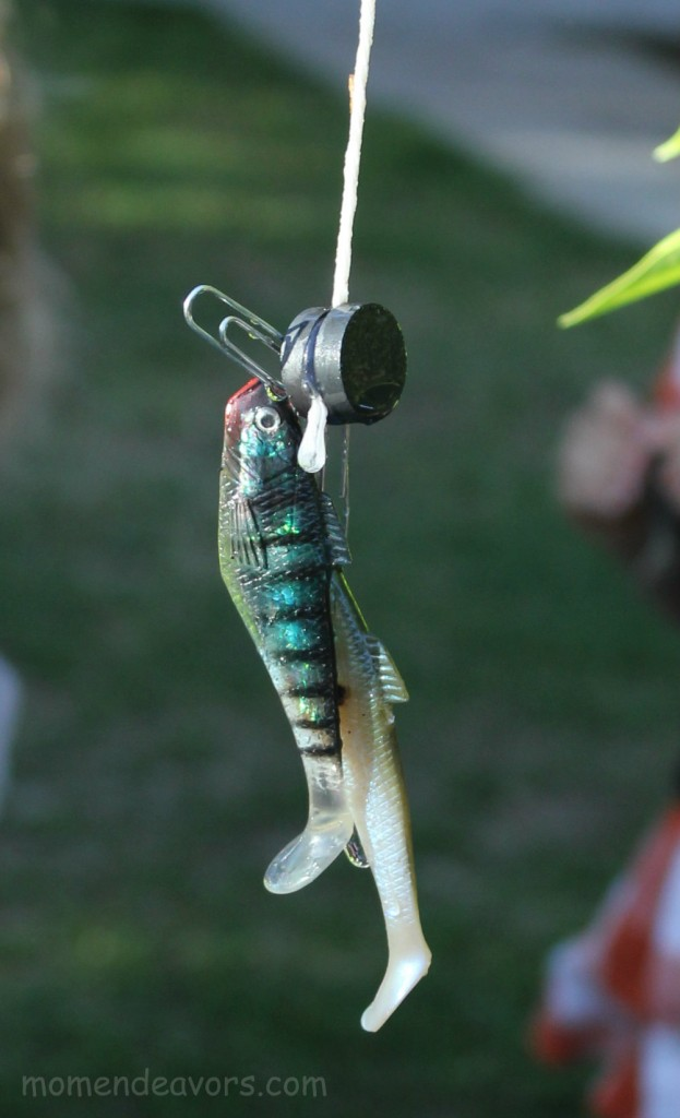 Diy backyard fishing activity for Big fish in a small pond game