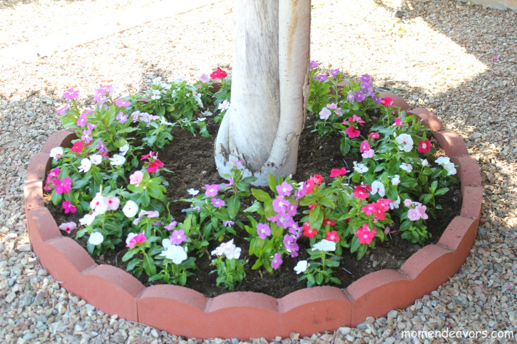 Adding Curb Appeal On A Budget Diy Tree Ring Flower Planter
