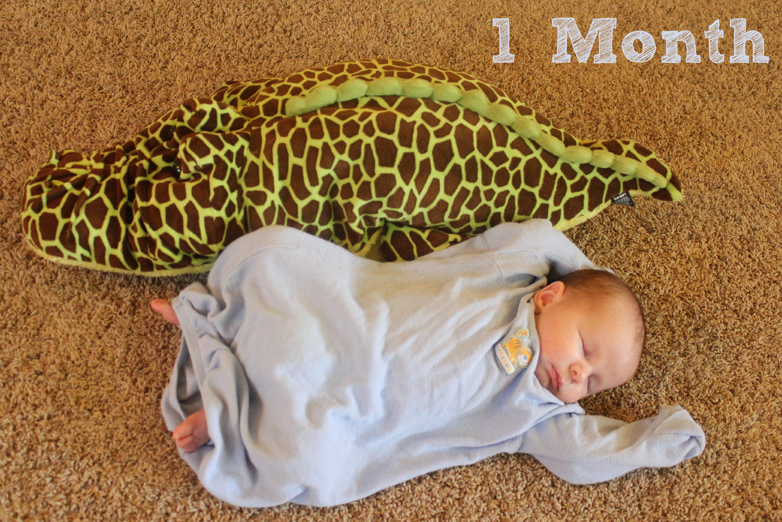 Baby Brother -1 month