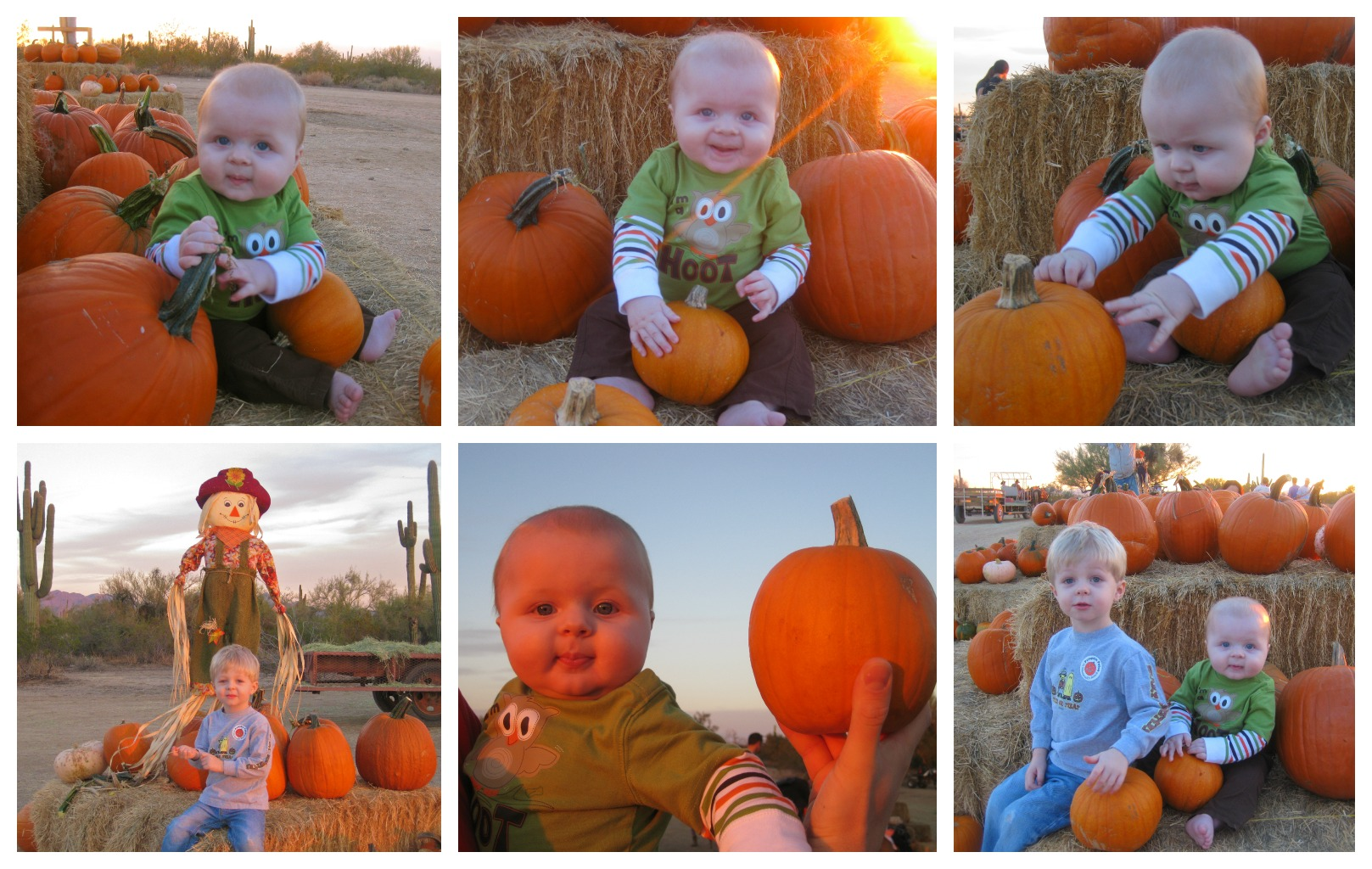 Fall Photography Ideas For Babies Fall photo shoot ideas forFall Photo Shoot Ideas For Babies