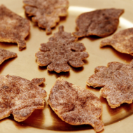 Cornucopia of Creativity: Homemade Cinnamon Sugar Tortilla Chips {See Vanessa Craft}