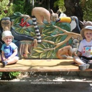 San Diego Zoo & Safari Park…Kids FREE in October {Travel Tuesday}