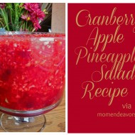 Cornucopia of Creativity: Cranberry Apple Pineapple Salad