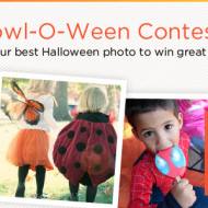 Giveaway: Win $75 to Shutterfly!