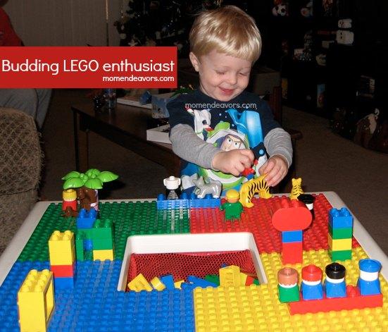 Little LEGO Fan