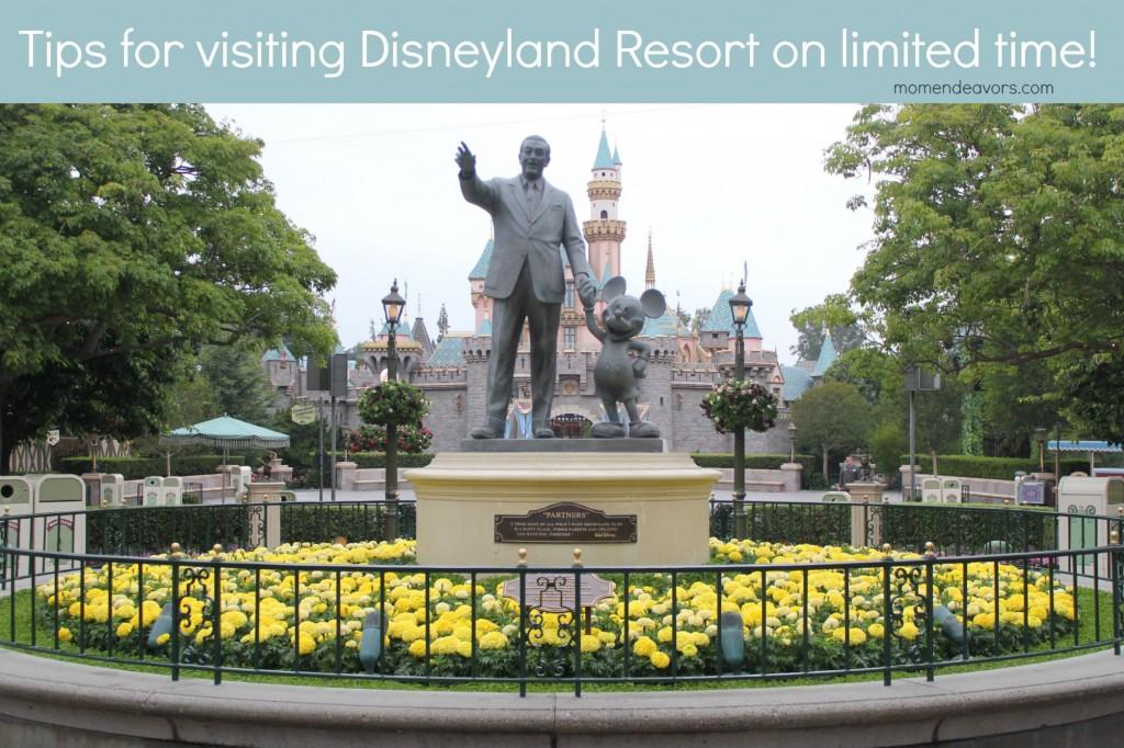 Disneyland on Limited Time
