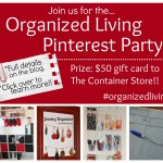 Organization Pinterest Party