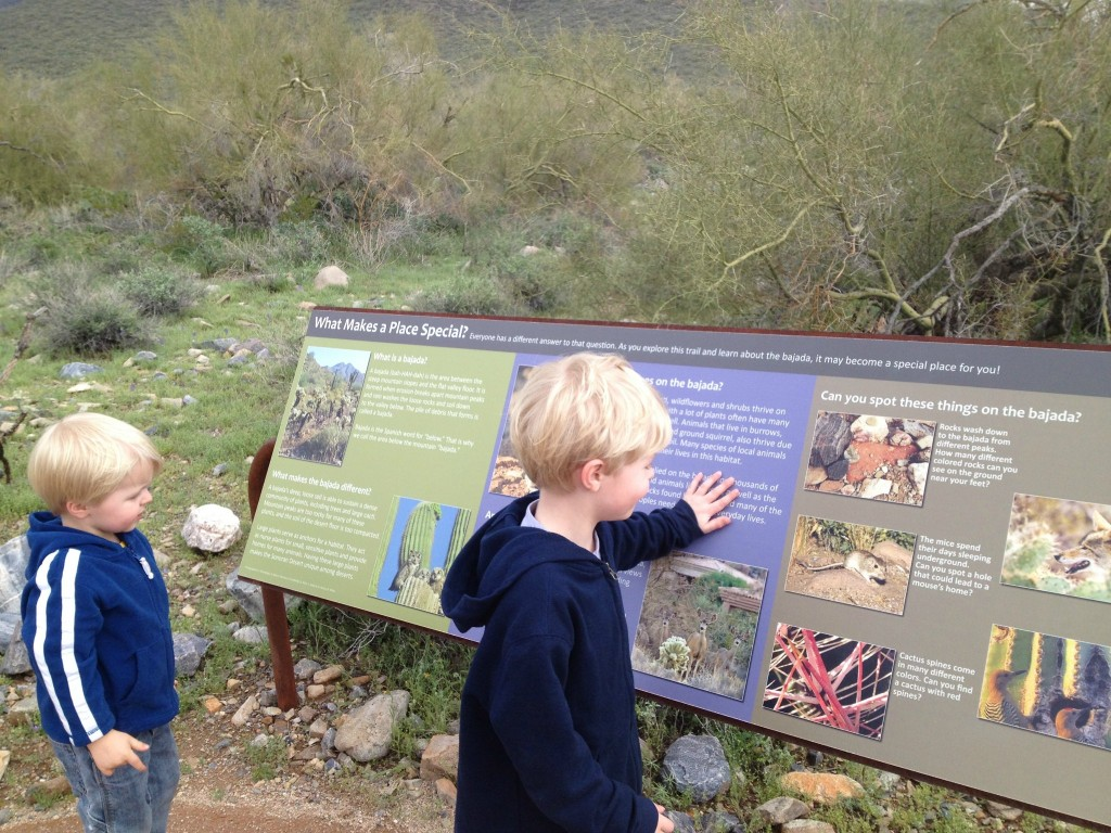Desert Nature Trail