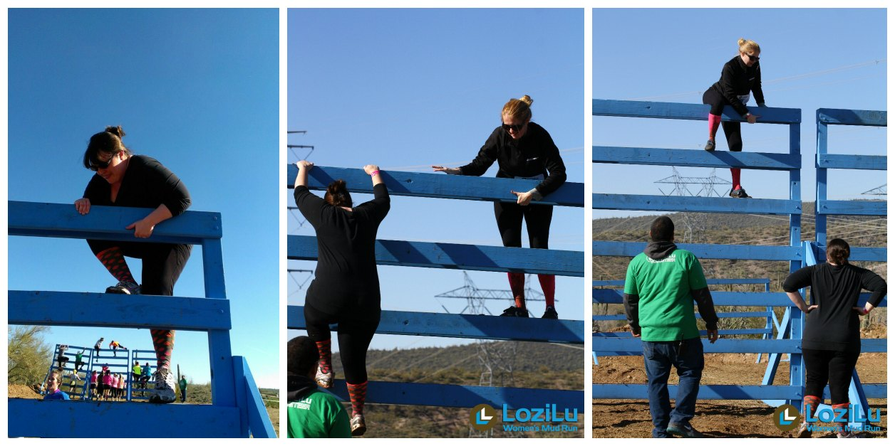 Lozilu Ladder Obstacle