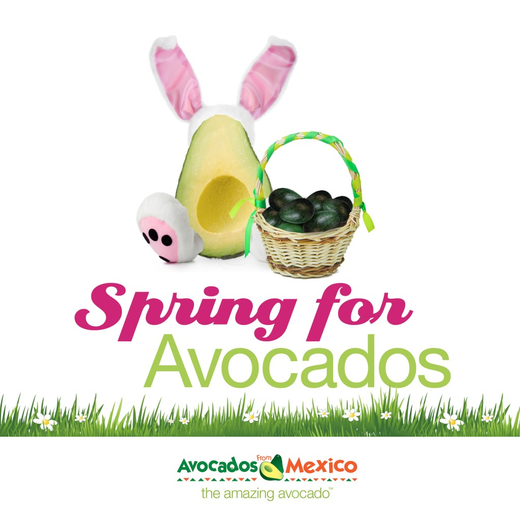 Spring for Avocados Logo FINAL