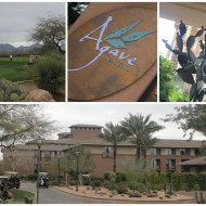 Scottsdale, Arizona Staycation – The Westin Kierland Review {Travel Tuesday}