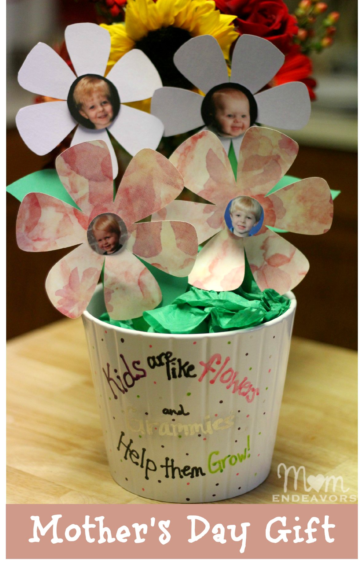 Simple mothers day gift ideas for grandma flower pot photo flowers negle Image collections