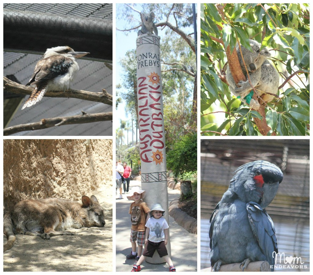 Australian Outback at the San Diego Zoo