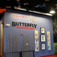 Butterfly Wonderland – New Attraction in Scottsdale, AZ