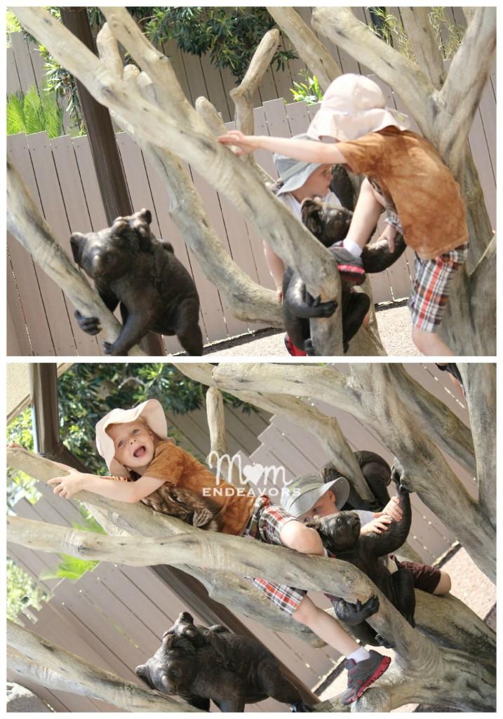 Koala play structure