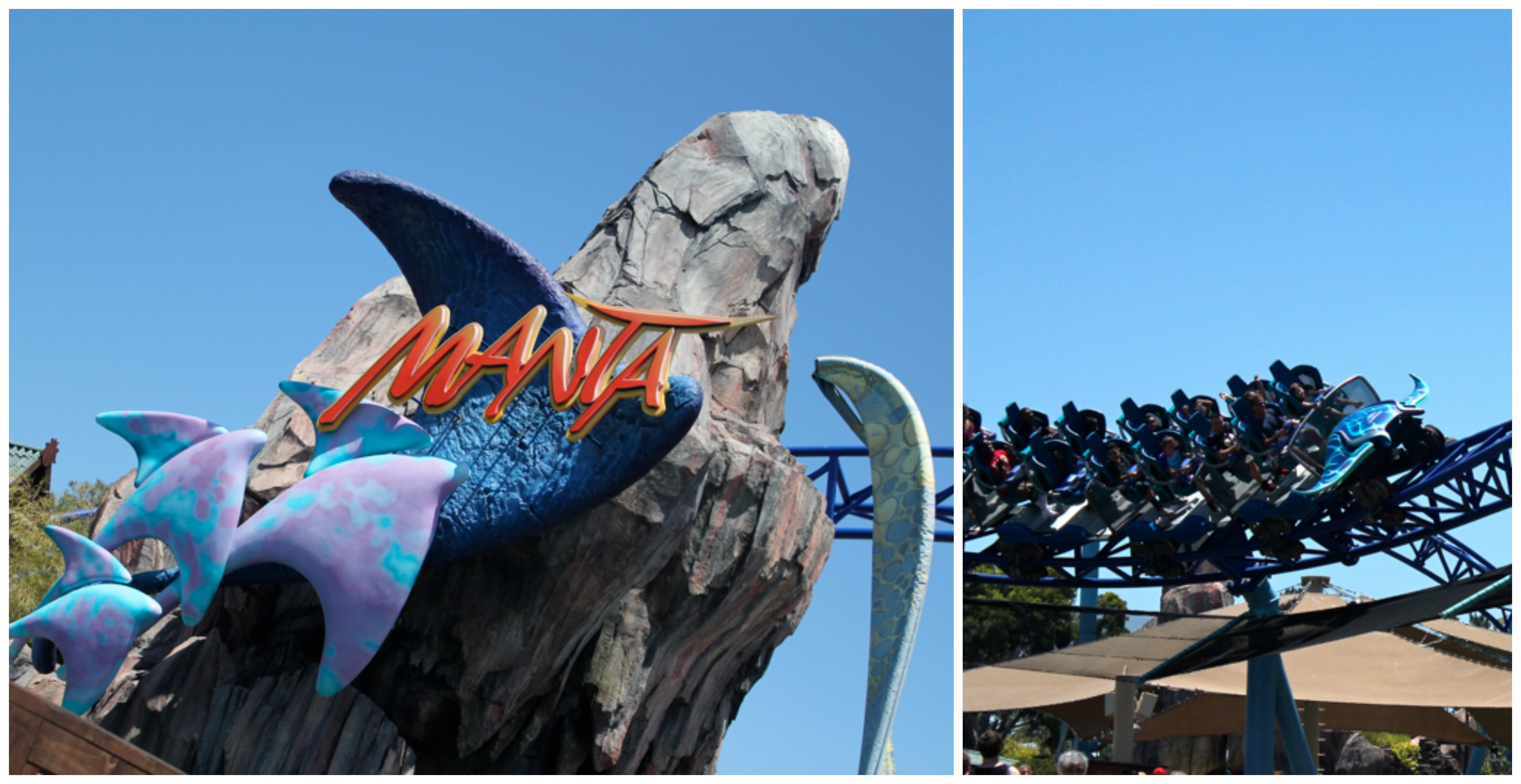Top 10 Must Do Attractions at Sea World San Diego Travel Tuesday