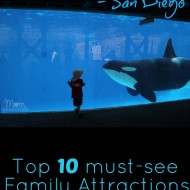 Top 10 Must-Do Attractions at Sea World San Diego {Travel Tuesday}