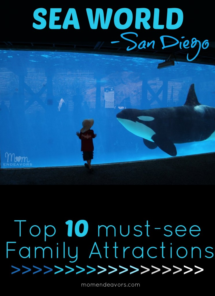 Top 10 Must Do Attractions At Sea World San Diego Travel