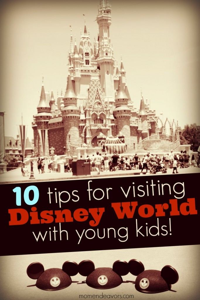Living Room Decorating Ideas For Apartments For Cheap: 10 Tips For Visiting Walt Disney World With Babies & Young