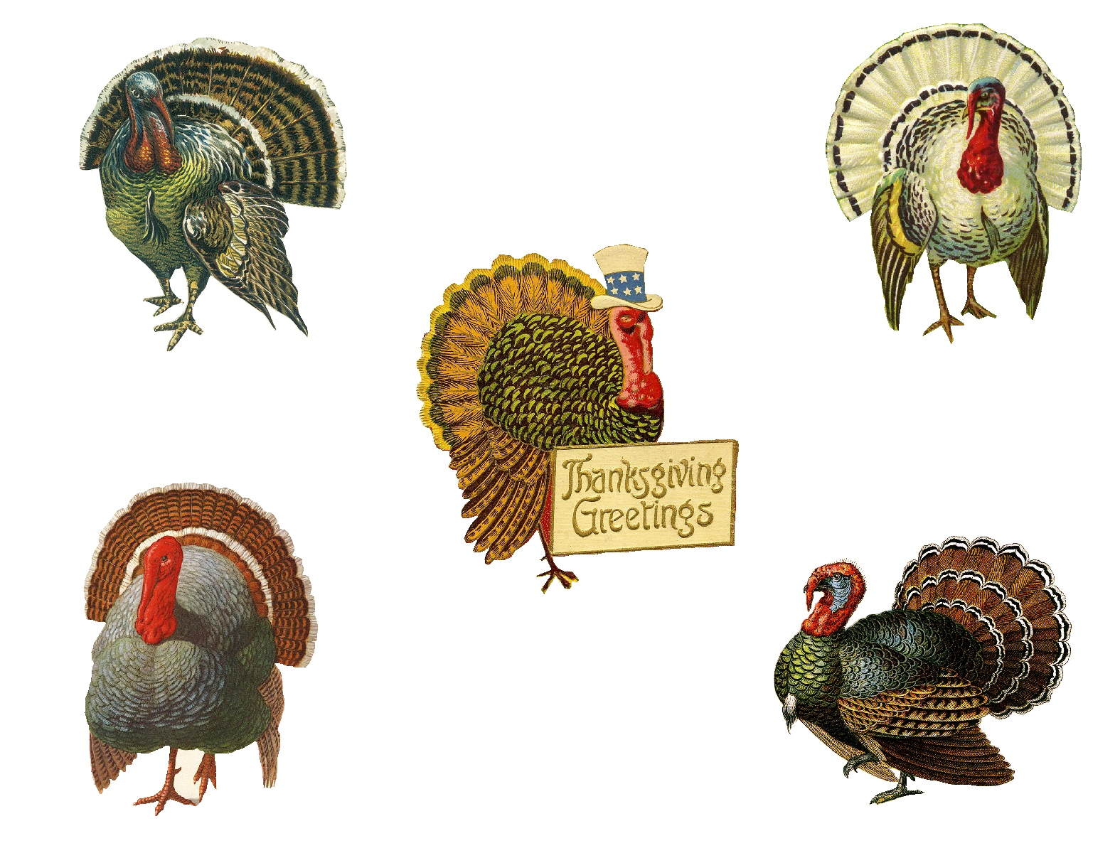 Diy vintage thanksgiving decor placecards from pet