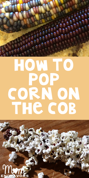 PopCornOnTheCobFeaturedImage