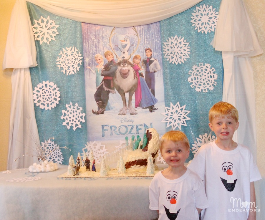 Boys' FROZEN Birthday