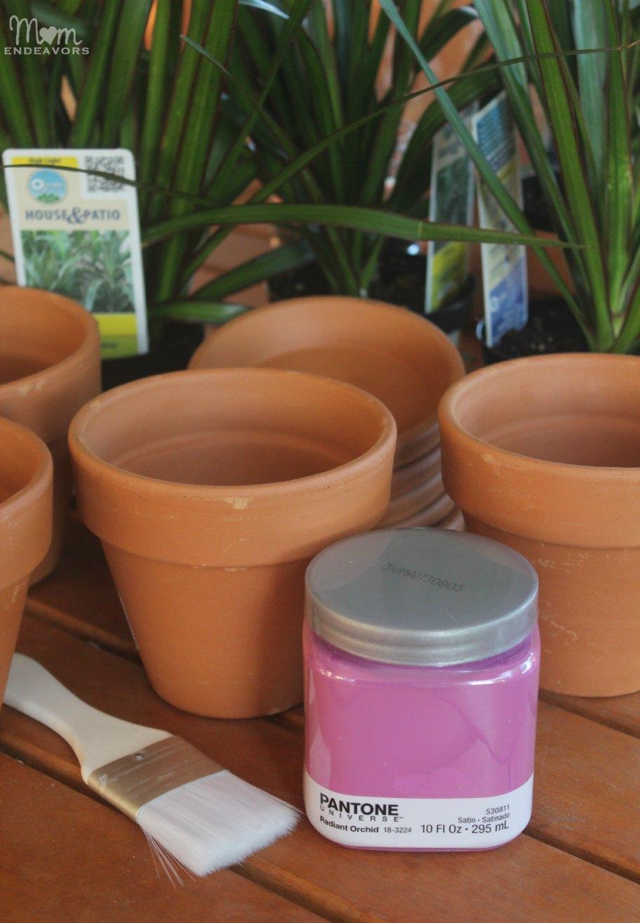 Pantone Radiant Orchid painted pots