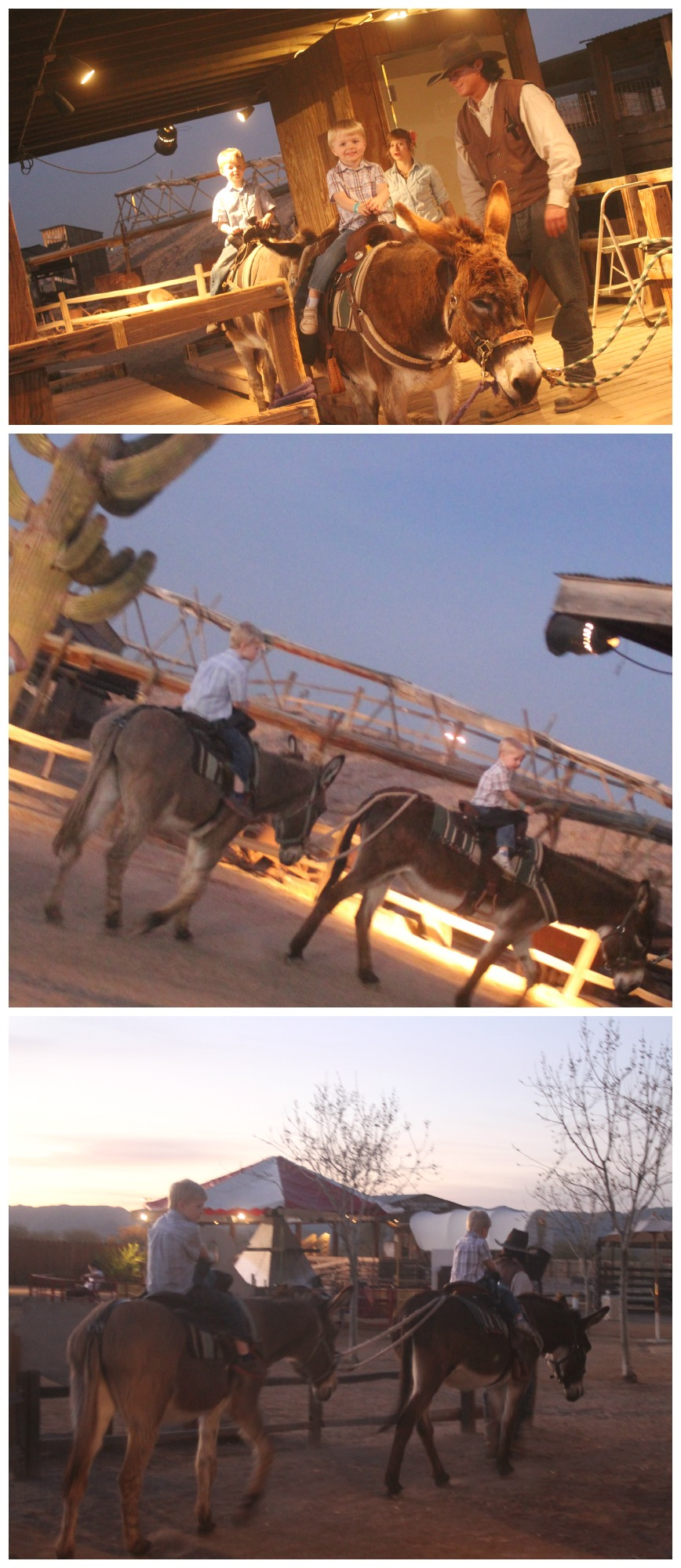 Burro Rides at Rawhide