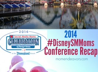Disney Social Media Moms 2014 Recap