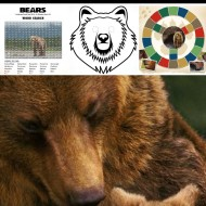 Disneynature's BEARS – Printable Activity Sheets & Educational Resources
