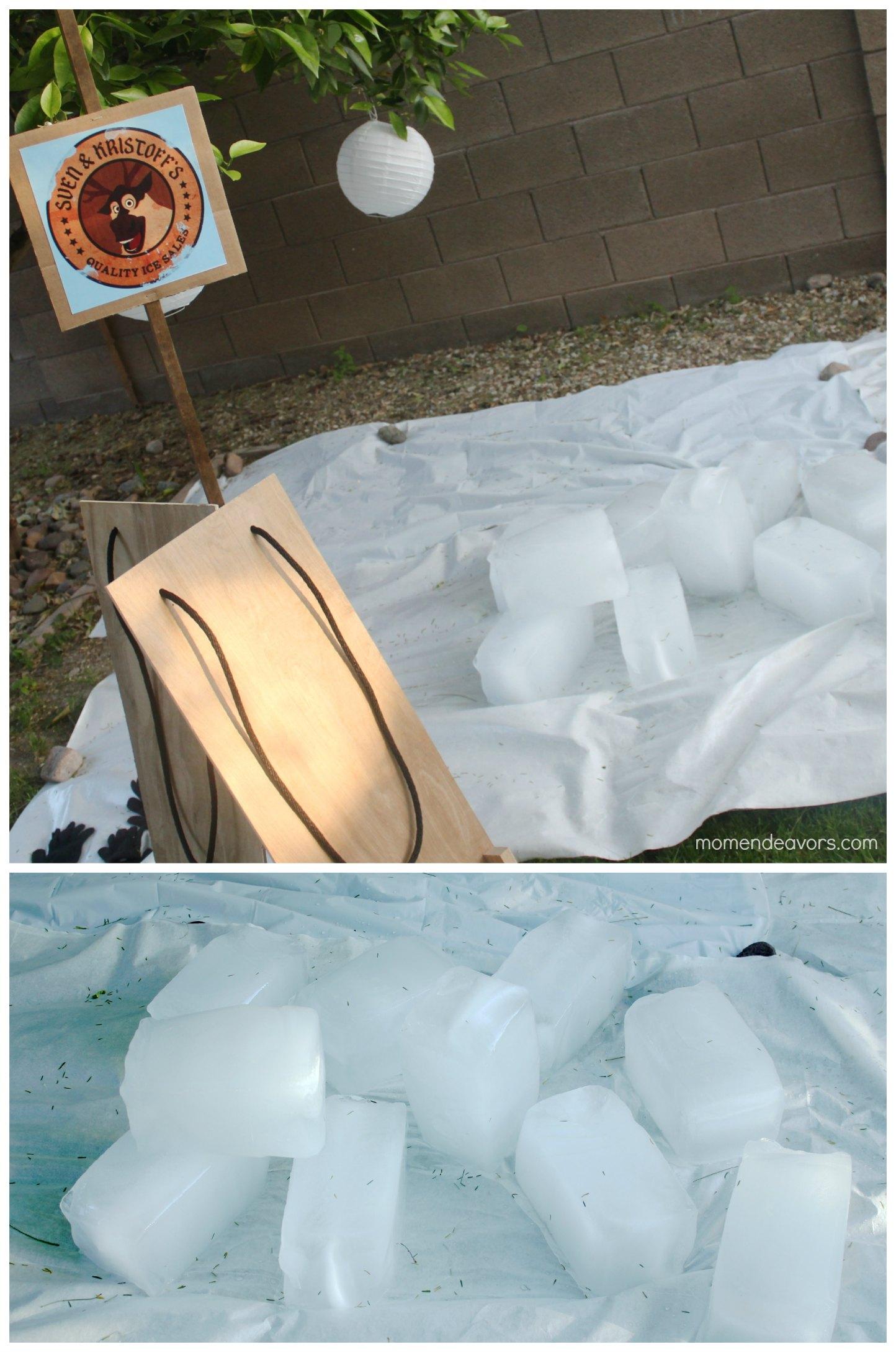 Disney FROZEN Ice Activity