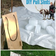 FROZEN Fun: Sven & Kristoff Ice Block Races with DIY Pull Sled