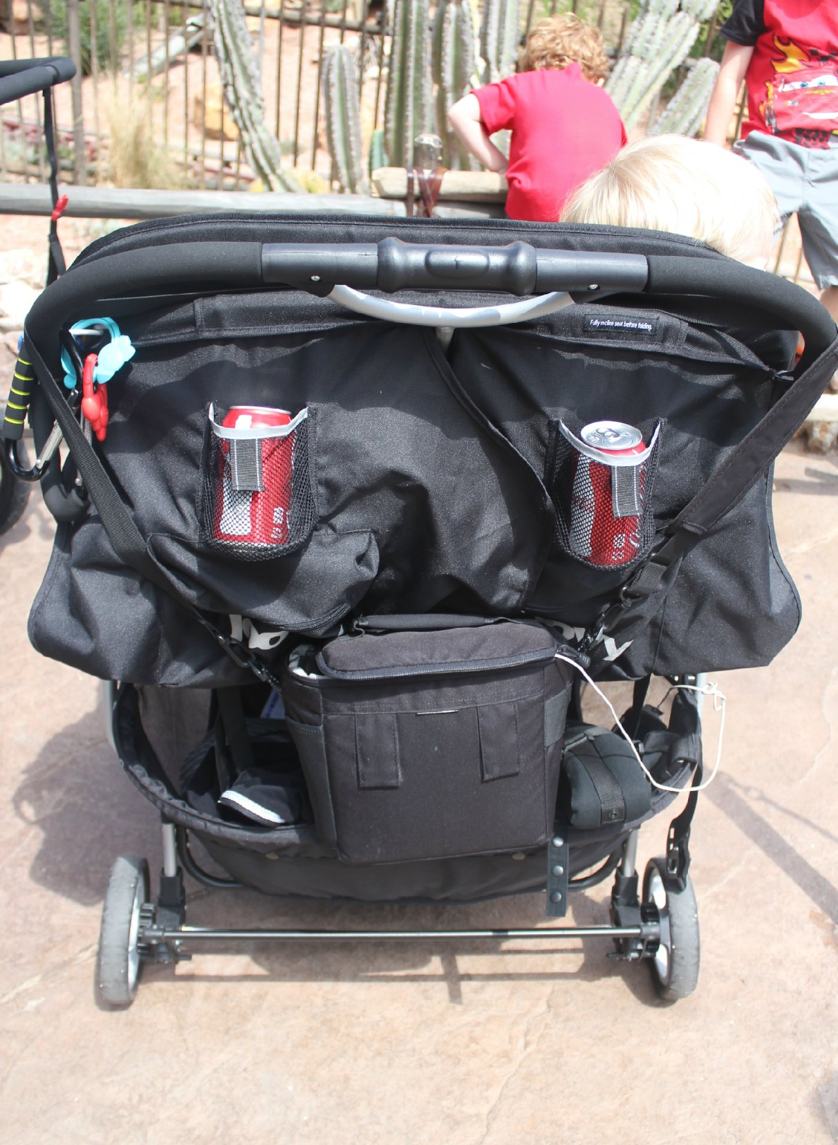 Double Stroller at Disney