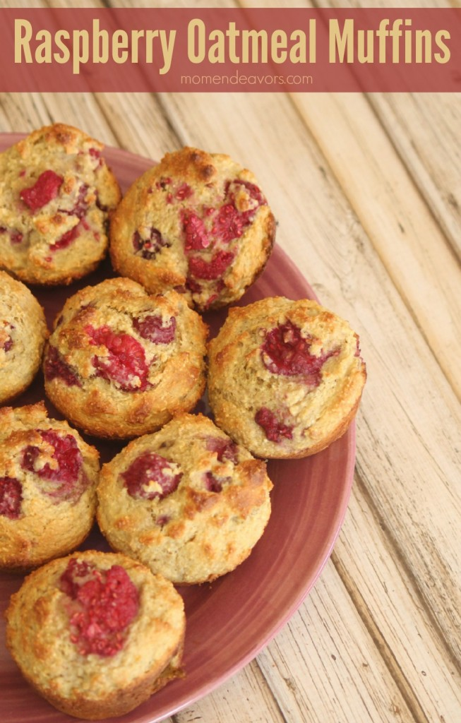 Applesauce Oatmeal Yogurt Muffins With Old Fashioned Oats