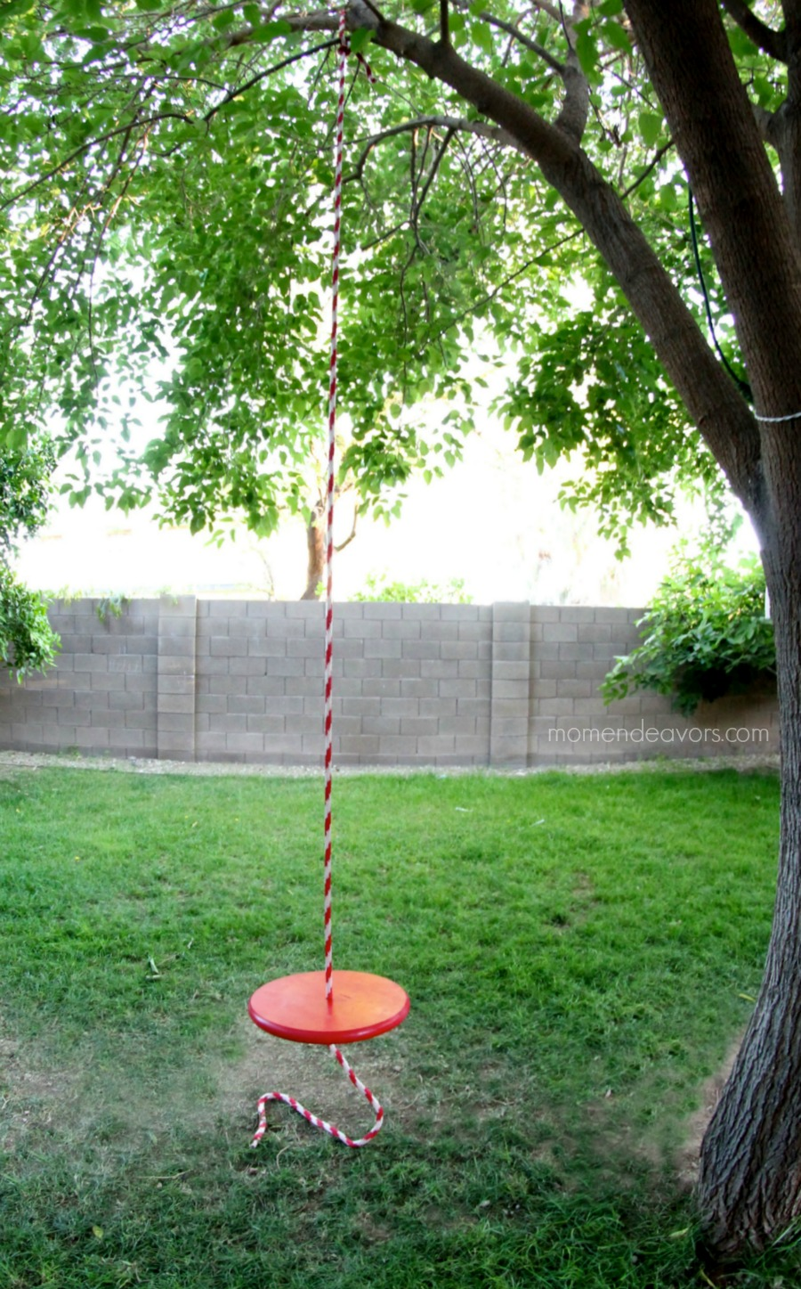 Single Rope Swing