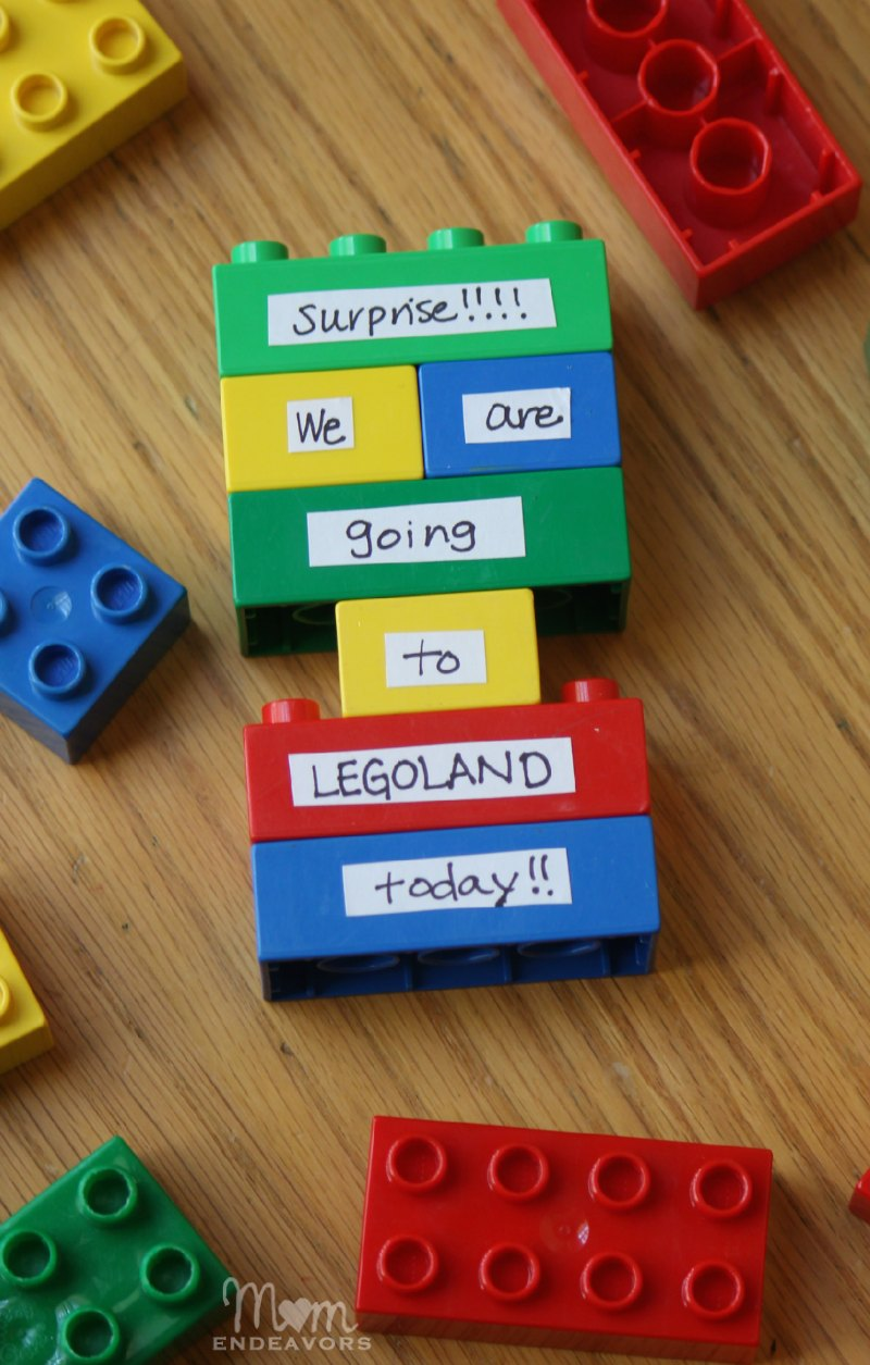 Legoland DIY Lego Surprise