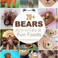20+ BEARS Activities & Fun Foods