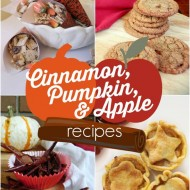 Tastes of Fall – 30+ Cinnamon, Pumpkin, & Apple Recipes