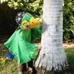Jake and the Never Land Pirates DIY Skully Costume