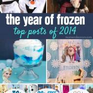 The Year of Disney's FROZEN – Top Posts of 2014