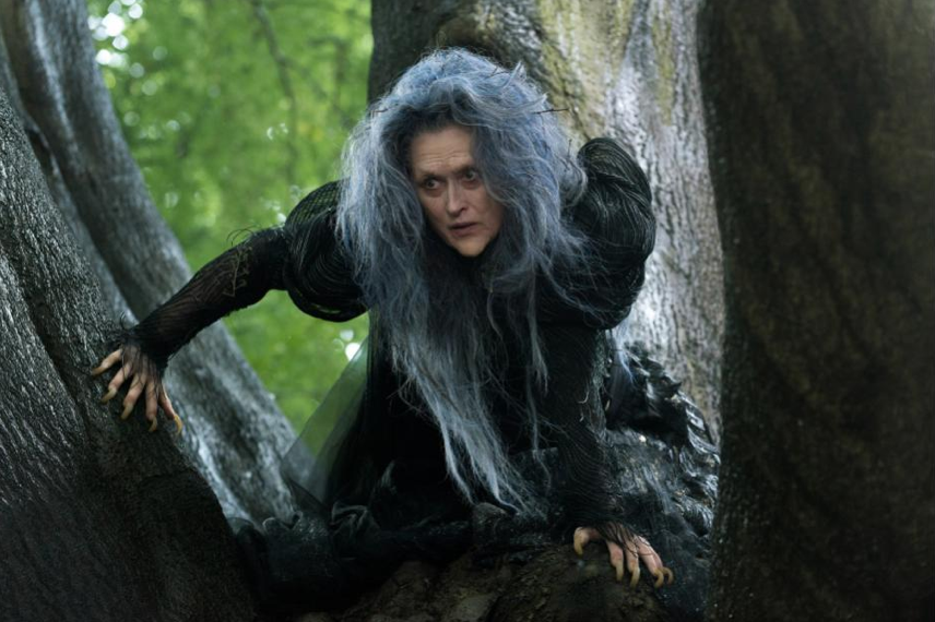 Meryl Streep Into the Woods Witch