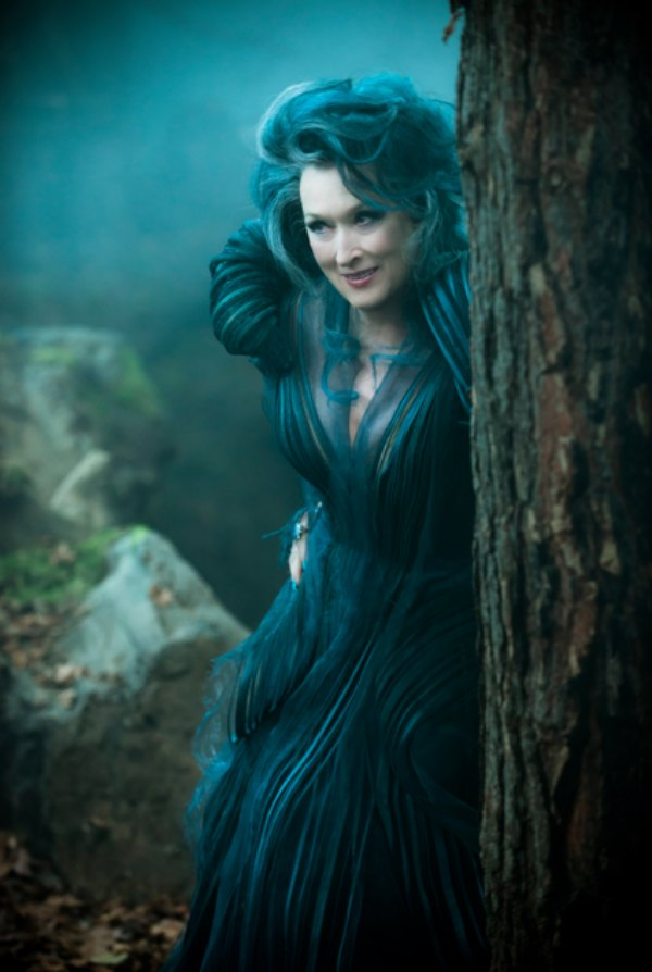 Into The Woods Blue Witch Costume
