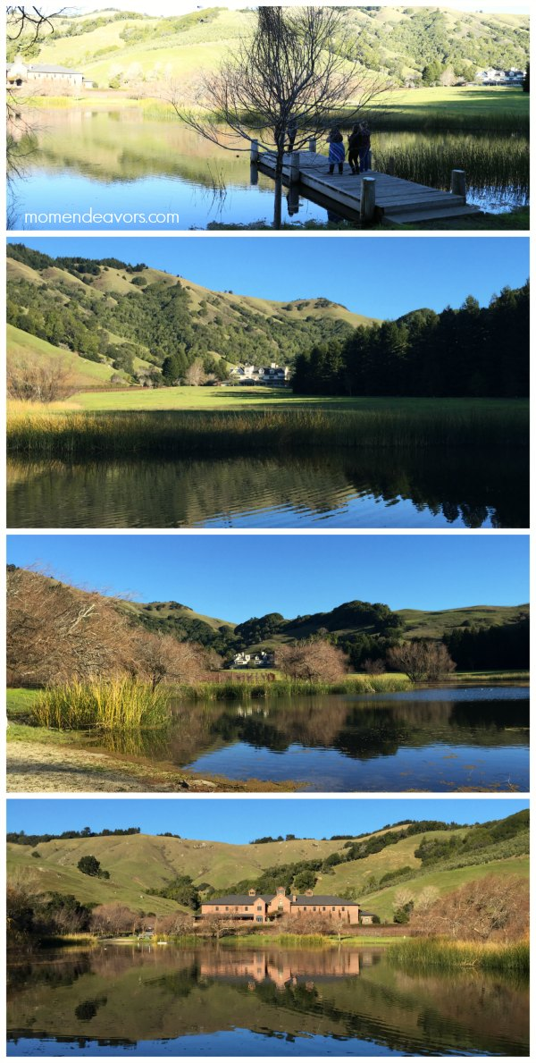 Lake Ewok at Skywalker Ranch