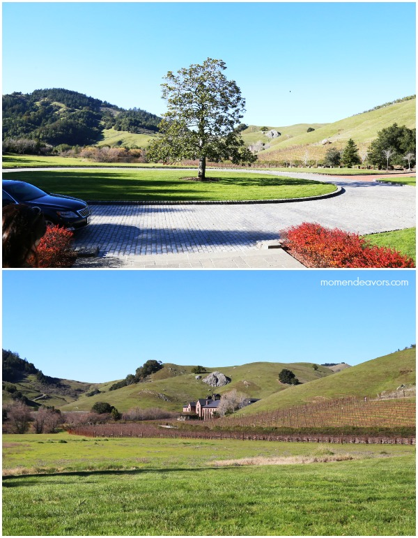Skywalker Ranch View