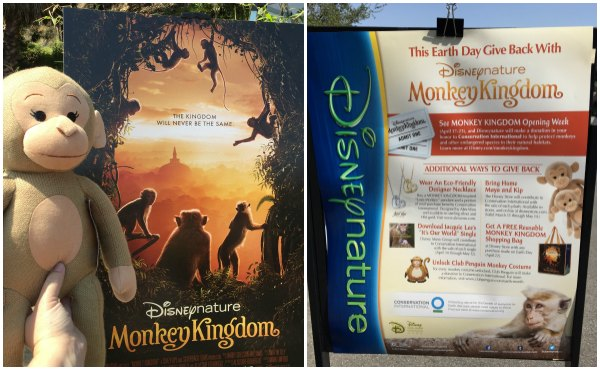 Disneynature #MonkeyKingdom