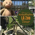 LA Zoo Monkey Kingdom Tour